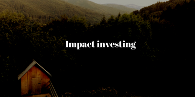 Impact investing che cos'è?